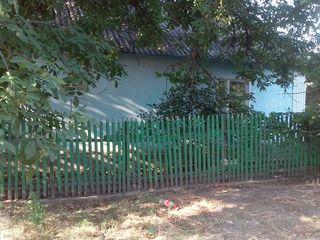 Срочно продается дом в центре Новых Анен