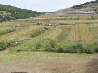 Teren agricol, r-l Hincesti, s. Mingir