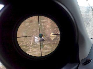 Оптические прицелы для пневматических винтовок. Новые в упаковке.