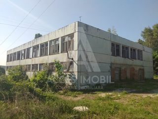 Vînzare! Spațiu industrial + teren în proprietate 25 ha, Ghidighici, 2300 m2.