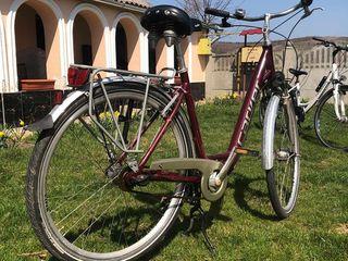 Bicicleta Carver!