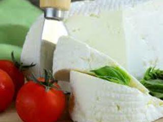 Se vinde brânză  curată de oi ,aproximativ 50 kg.