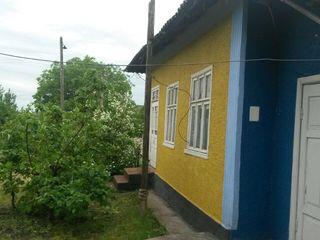 Vand casa + 30ari rn Drochia
