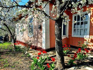Vind casa în orașul Călărași