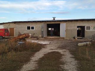 Продаю участок и складское помещение рядом с Кишиневом