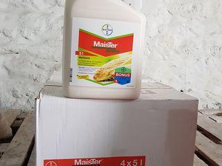 Erbicide pentru porumb,rasarita.griu,funghicide,insecticide,ingrasaminte,reduceri.