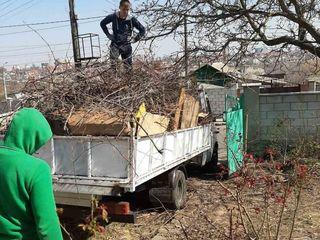 Transport- evacuarea gunoiului, materialelor de construcții, mobilei