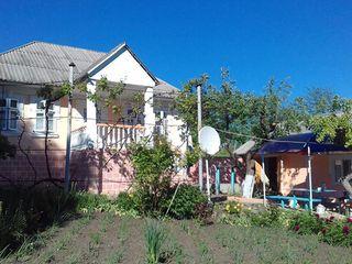 Vind casa-soldanesti(oliscani) cu 2 cote de pamint(4 ha)