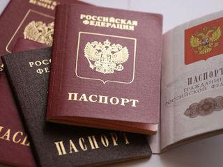 Консультации по получению гражданства в России