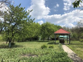 Дачный участок Пересечино