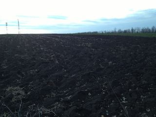 Vînd  la Telenești 4,5 hectare de pămînt arabil zona de deal antena Oranj.