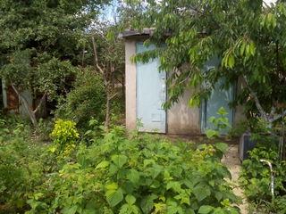 Дачный участок в отличном месте недалеко от Кишинева