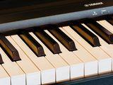 Lectii individuale de pian