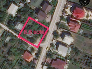 Vinzare teren construcție Dumbrava, ultra central