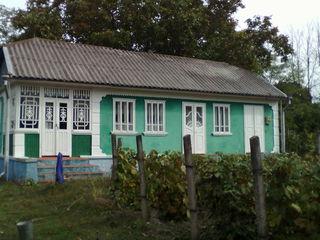 Se vinde gospodarie in satul Terebna, r-nul Edinet