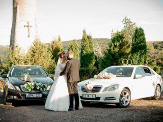 Chirie/прокат Mercedes albe/negre (белые/черные)