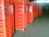 Пластиковые ящики из Румынии / Navete din plastic din Romania
