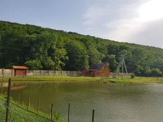 Сдается домик для семейного отдыха в живописной сельской местности