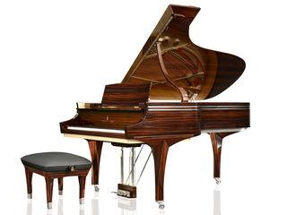 Piano lesson In Chisinau