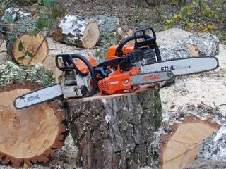 Taierea lemnelor de foc. Распил дров.