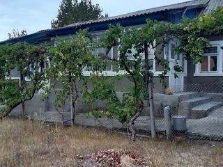 Продаётся дом в Криулянах
