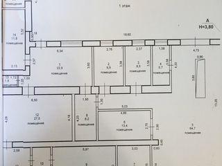 Бендеры, Центр. Здание под бизнес или жилой дом, 233,7 кв. м, 7,2 соток