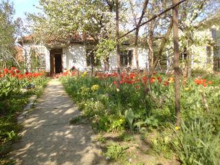Продается дом в центре кишинева по ул. университетской 22
