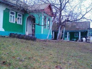 casa si teren agricol  in zona ecologica ( 300 metri de la nistru , 200 metri de la padure)