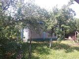 Продаётся дом + сарай в Чоропканах