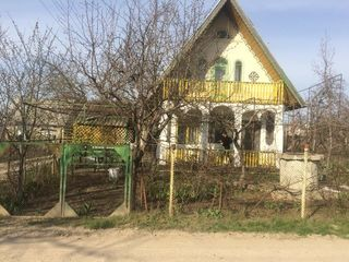 Продам срочно Дача(Извораш)4км от города 11000 евро