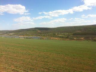 Дача,одноэтажная (3х4.5).,6 соток, 100м от Чимишенского озера ,цена 1700 евро.