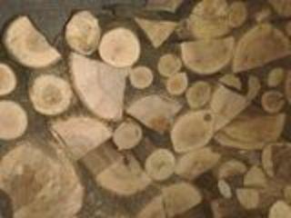 lemne de foc tari