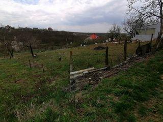 """Lot Pomicol Ialoveni IP """"Lunca Verde"""" 4km de la cercul din Ialoveni - 3500Euro"""