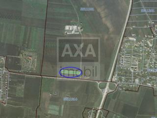 Teren agricol cu suprafața de 98 ari, Băcioi