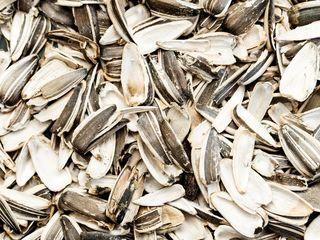 Vindem coaja = продаем шелуха (скорлупа) подсолнуха врассыпную