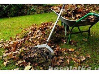 Газон озеленение, работа в садах и огородах.