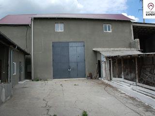 Ialoveni, Bardar, ferma de porci - 4400 m2 si 4,26 ha de teren