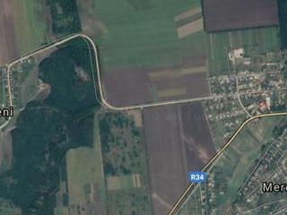 Se vinde cota cu vita de vie muscat otoneli,ingrijita,in satul Mereseni municipiul Hincesti.