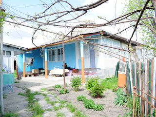 Se vinde casa in satul Coscodeni