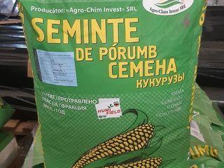 Семена Кукурузы P-270, P-458, P-459, P-461. Обработанные микроэлементами HumiField.