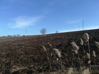 Vind teren agricol 2,70