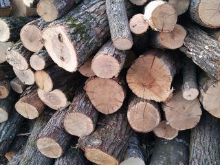 Vind lemn de foc stejar,carpen,(tei)