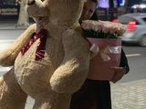 Ursi de plus giganti 170 cm !!! 999 lei noi + livrare gratuita 24/24