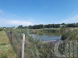 Iaz cu teren agricol si pentru constructii. 5 Ha. Magistrala M2. 18km de la Chisinau.