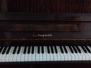 Pianino, Lirica