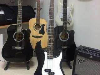 chitara bass Harley Benton Standart Serie,бас гитара