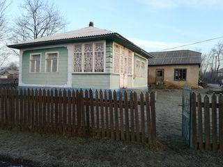 Casa de locuit in s.Alexandreni Edinet