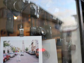 Фотосалон - печать фотографий (Кишинёв, ботаника)