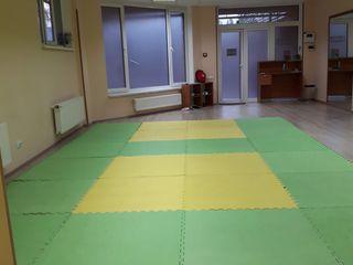 Judo copii Botanica,Telecentru