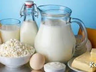 Продам домашнее молоко творог и брынзу